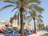 Holiday Rental Torre del Mar Costa del Sol